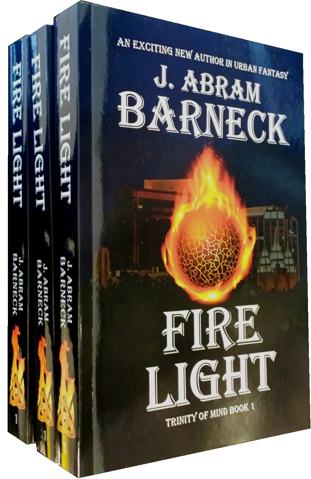 Fire Light in Paperback